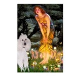 Fairies / Std Poodle(w) Postcards (Package of 8)