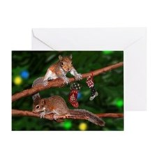 Squirrel Tree Lights Greeting Card