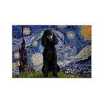 Starry / Std Poodle(bl) Rectangle Magnet (10 pack)