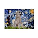 Starry / Std Poodle (s) Rectangle Magnet (10 pack)
