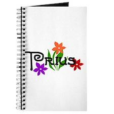 Cute Toyota prius Journal