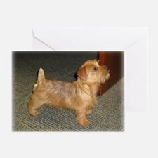 Whimsical Norfolk Terrier Puppy Greeting Card