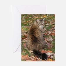 Maine Coon cat Fall leaves Greeting Cards (Pk of 1
