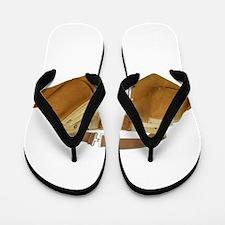 2-ToolBeltWhole061509.png Flip Flops
