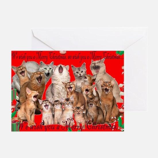 Somali cat Christmas Cards (Pk of 20)