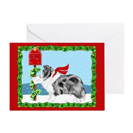 Bi Blue Sheltie Mail Greeting Card