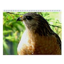 Cute Bird of prey Wall Calendar