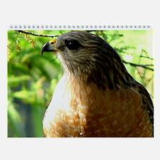 Unique Birder Wall Calendar