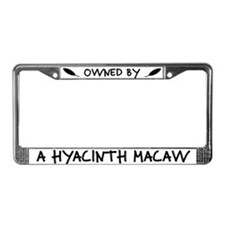 Owned by a Hyacinth Macaw License Plate Frame