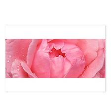 l'Rose Moderne Postcards (Package of 8)