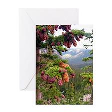 Pine Cones: Truchas Peaks Greeting Card