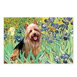Irises - Aussie Terrier Postcards (Package of 8)