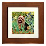 Irises - Aussie Terrier Framed Tile