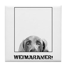 Weimaraner In A Box! Tile Coaster