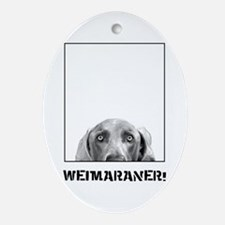 Weimaraner In A Box! Oval Ornament