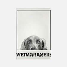 Weimaraner In A Box! Rectangle Magnet