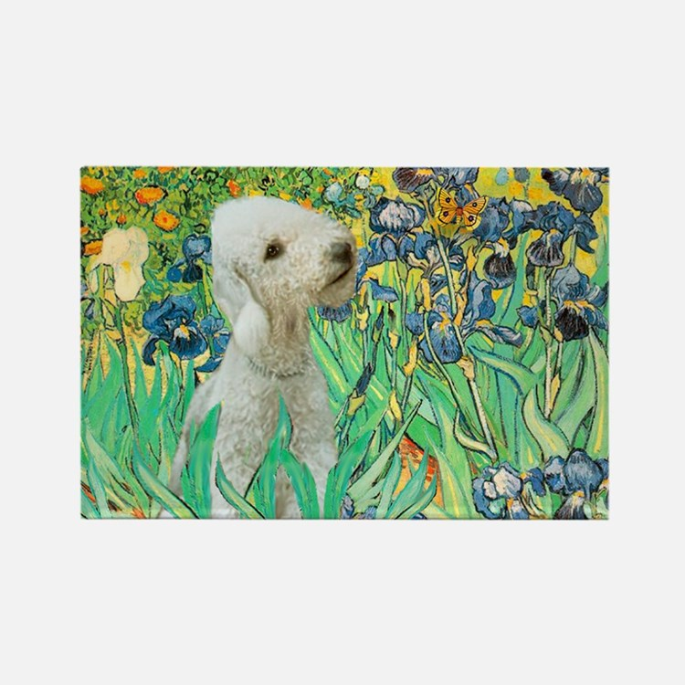 Irises /Bedlington T Rectangle Magnet
