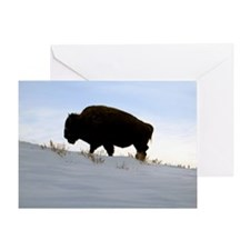 Bison On A Snowy Hill Greeting Card