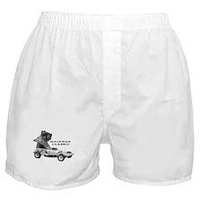 BriSCA Wainman Classic Boxer Shorts