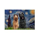 Starry - 2 Briards Rectangle Magnet (10 pack)