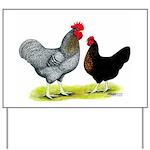 Black Sex-link Chickens Yard Sign