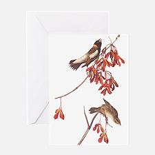 Rice Bunting Audubon Vintage Greeting Cards