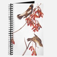 Rice Bunting Audubon Vintage Bookplate Journal
