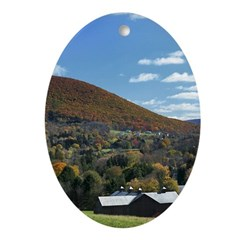 Mount Nittany Oval Christmas Ornament