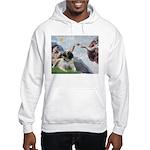 Creation / Bullmastiff Hooded Sweatshirt