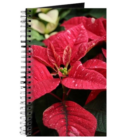 Colorful Poinsetta Christmas Journal
