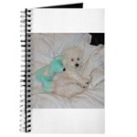SOPHIE AND MOUSE JOURNAL