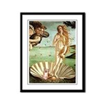 Venus/Puff Crested Framed Panel Print