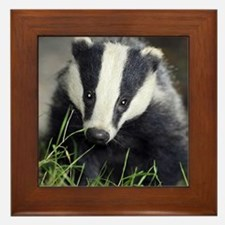 Badger Framed Tile