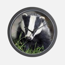 Badger Wall Clock