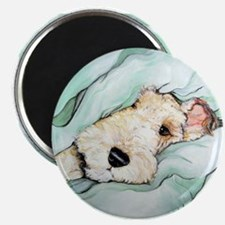 Napping Wire Fox Terrier Magnet