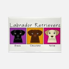 Three Labradors Bright Rectangle Magnet