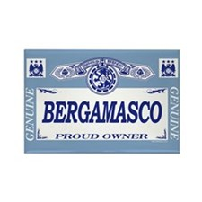 BERGAMASCO Rectangle Magnet