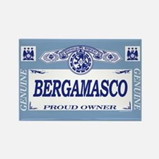 BERGAMASCO Rectangle Magnet (100 pack)