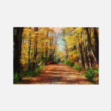 Autumn Road Magnets