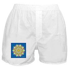 Burst of Color Star Boxer Shorts