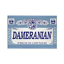 DAMERANIAN Rectangle Magnet