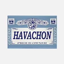 HAVACHON Rectangle Magnet