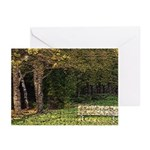 Bench In Forest Greeting Cards (Pk of 20)