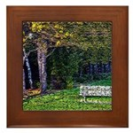 Bench in the Forest Framed Tile
