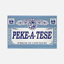 PEKE-A-TESE Rectangle Magnet