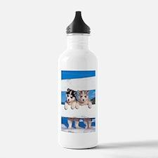 Two Husky puppies Water Bottle