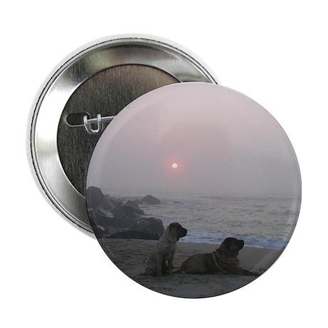 "Shar-Pei sunrise 2.25"" Button"