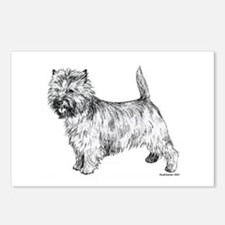Cairn Terrier pen & ink Postcards (Package of 8)