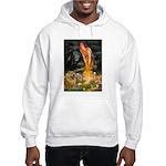 Fairies / Chow #1 Hooded Sweatshirt