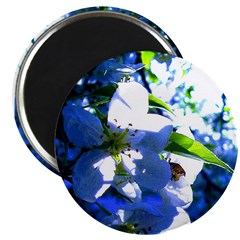 Apple Blossom Blues Magnet
